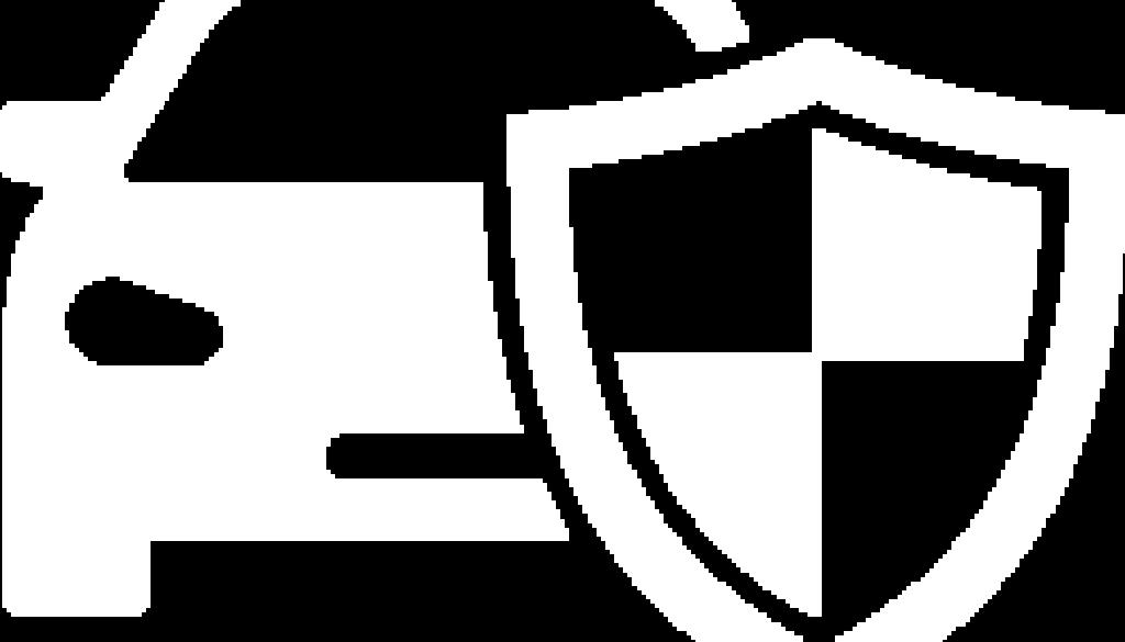 Roadside-Security-icon